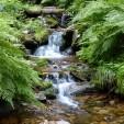 Góry Stołowe i ich atrakcje